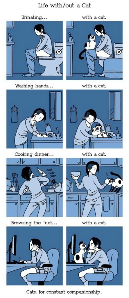 Life with/without cats